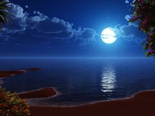 обои Пляж ночью лунная дорожка фото