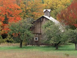 обои Старый деревенский домик в лесу фото