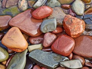 обои Мокрые камушки морские фото