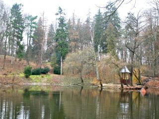 обои Озеро в лесу фото