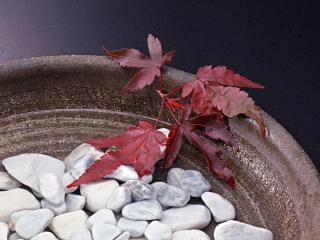 обои Чаша наполненная камнями фото