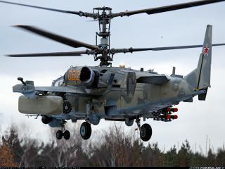 обои Вертолёт КА-52 фото
