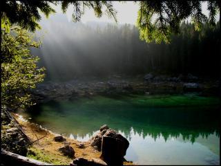 обои для рабочего стола: Зорька над прудом, в летнем еловом лесу