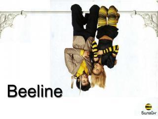 обои BeeLine - летучие мыши фото