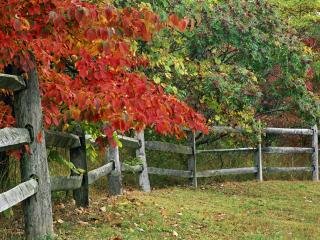 обои для рабочего стола: Autumn Fence,  Brown County State Park, Indiana