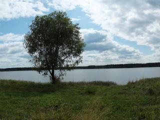 обои Берег озера фото