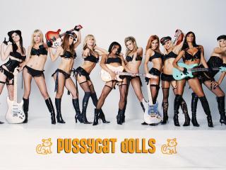 обои Pussycat Dolls фото