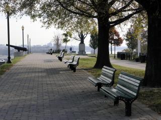 обои Вид скамеек в парке фото