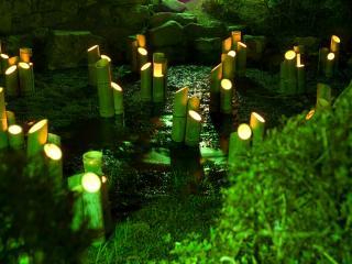 обои Бамбуковые светильники таинственный обряд фото