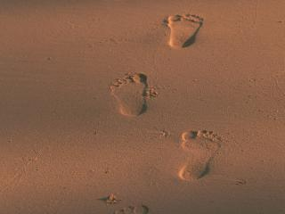 обои Следы на песке фото