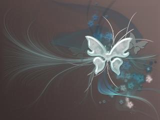 обои Бабочка цветов фото