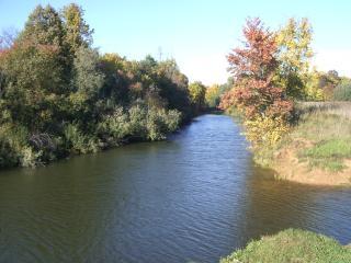 обои Развилка реки фото