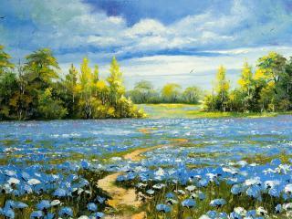 обои Синие цветы - целое поле фото
