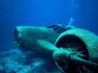обои Затонувший самолёт и дайверы фото
