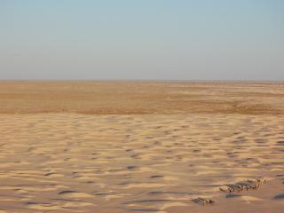 обои Сахара с высоты птичьего полёта фото