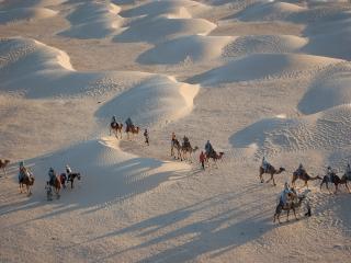 обои По пустыне идёт караван фото