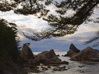 обои На берегу Японского моря фото