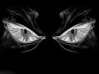 обои Черно-белые глаза фото