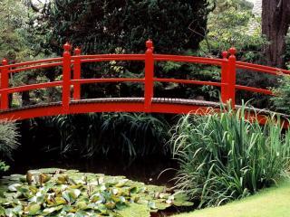 обои Декоративный мост фото