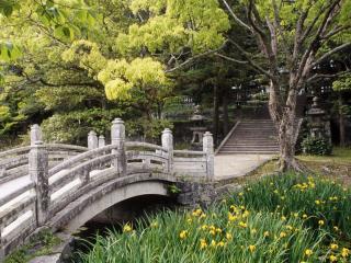 обои Вход в парк фото