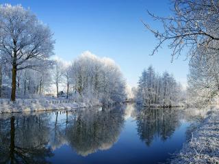 обои Зимний пруд у аллеи фото
