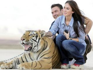 обои Двое влюблённых и тигр на цепи фото