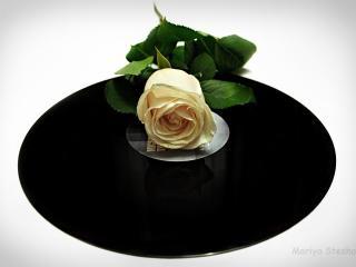обои Роза на виниловой пластинке фото