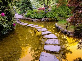 обои Сад мечты фото