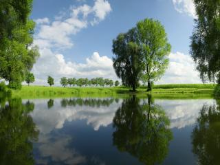 обои Чистый пруд среди зеленых лугов фото