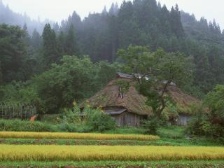 обои Япония Фудзи - дом у горы фото