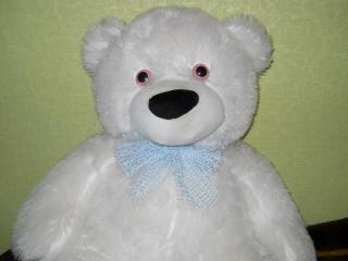 обои Белый медведь фото