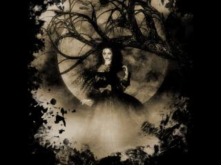 обои Лесная ведьма под луной фото