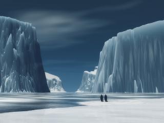 обои Жизнь в арктических льдах фото