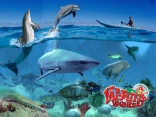 обои Wildlife Park 2: Marine World фото