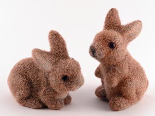 обои Две маленькие коричневые игрушки-зайцы фото