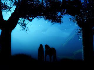 обои Девушка и конь в ночи фото