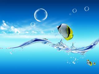 обои Тропические рыбки в голубом пространстве фото
