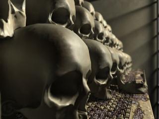 обои Коллекция черепов фото