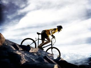 обои Велосипедист фото