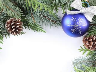обои Две шишки на елке и и игрушка фото