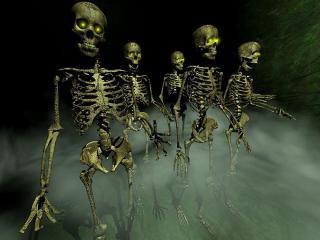 обои Ночная прогулка скелетов фото