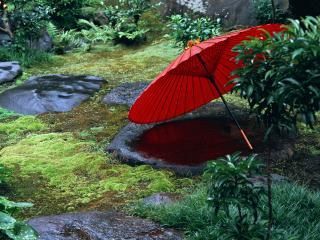 обои Японский сад фото