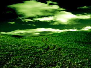 обои Зеленая долина фото