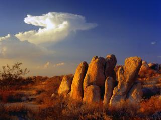 обои Камни в пустыне фото