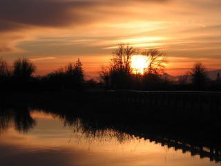 обои для рабочего стола: Закат весеннего солнца на пруду