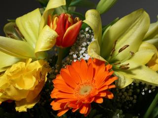 обои Желто-оранжевый букет с лилиями фото