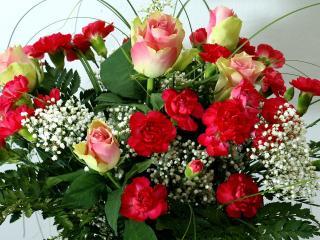 обои Букет из розовых роз и красных гвоздик фото
