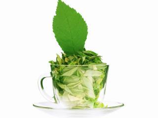 обои Чашка зеленых листьев фото