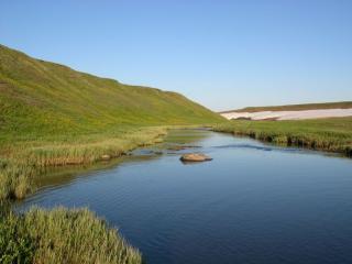 обои Левый приток Щугора фото