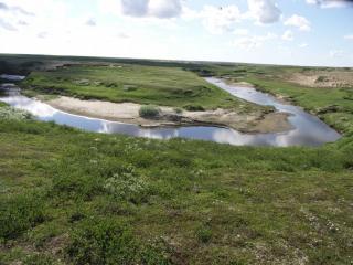 обои Летний ручей среди лугов фото
